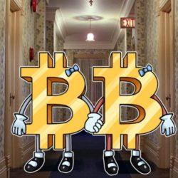 bitcoin & bitcoincash