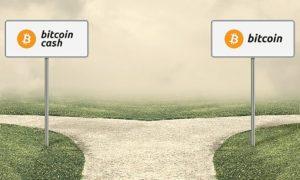 Bitcoin Legacy vs Bitcoin Cash