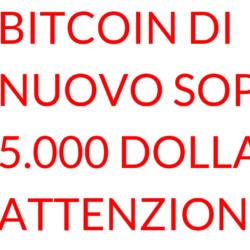 Bitcoin sopra 5.000 dollari