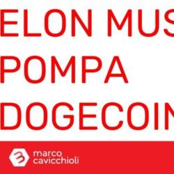 Elon Musk pump Dogecoin