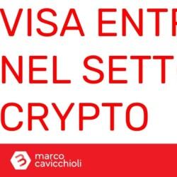 Visa criptovalute usdc