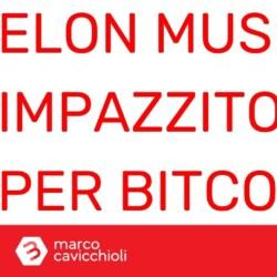 elon musk impazzito bitcoin