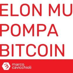 Elon Musk pump prezzo bitcoin