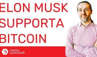 bitcoin elon musk jack dorsey cathie wood
